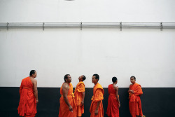 Buddhist monks chat before a mass alms offering ceremony in Bangkok, Thailand on May 19, 2013. Thousands of Buddhist monks and believers attended the ceremony to mark Vesak Day, the annual celebration of Buddha's birth, enlightenment and death. [Credit : Damir Sagolj/Reuters]