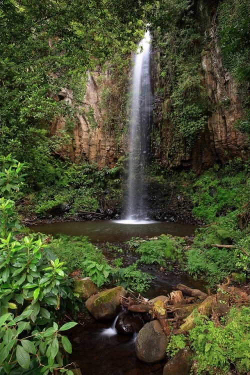 nature landscape waterfalls madeira ponderation flora portugal my posts