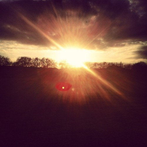 #Sunset over #WansteadFlats #Sun #Framing #Light #Sky #Nature #Trees #Silhouette #Glare #March2013 #IamRoLoRo #RochelleLoRo