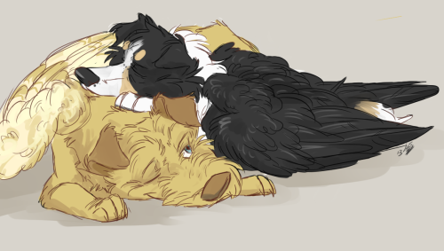rainbowrites asked you: I'd like to see some Balthazar+Castiel doggy friendship  advachiel asked you: for shipping month: castiel x balthazar!