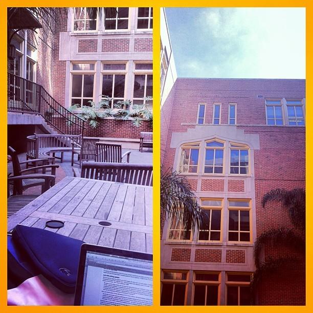 Why I love my school. #FSU @ Williams courtyard. #perfectday #sunny 🌞👌☀