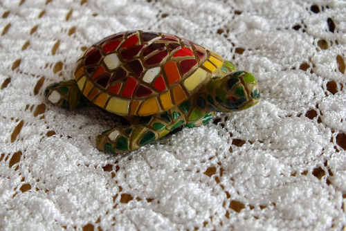Tortuga de colores on Flickr.