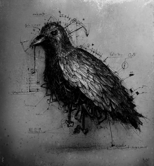 Black and white raven crow gothic art dark art darkestdee
