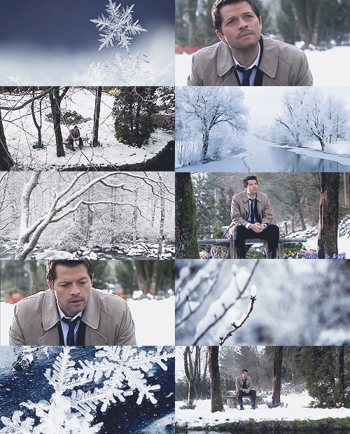 "↳ nature!angel series- castiel + snow  ""Pine trees with low limbs spread over fresh snow made a stronger vault for the spirit than pews and pulpits ever could."""