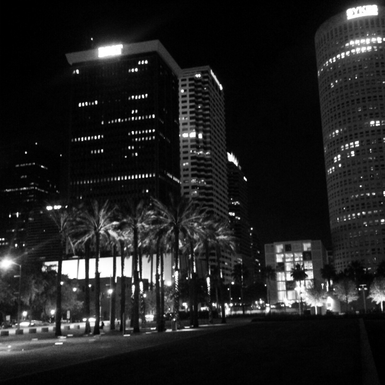 Downtown Tampa shines beautifully at night.