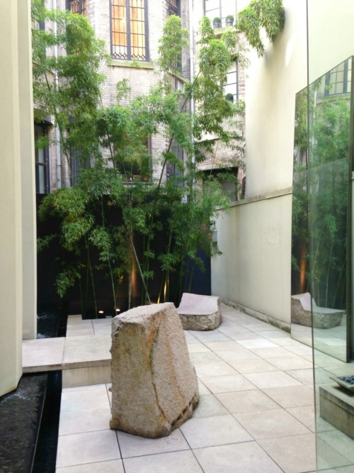 Urban oasis at the #DonnaKaran store on Madison Avenue (819)