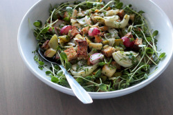 yummyinmytumbly:  roasted vegetable panzanella for early spring