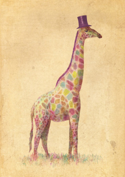 urhajos:  'Fashionable Giraffe' by Terry Fan