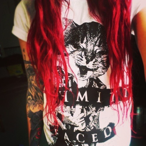 justjadertater:  (19) cat | Tumblr on @weheartit.com - http://whrt.it/163JQvg