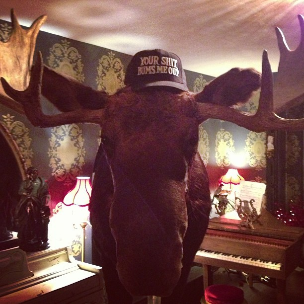 deadmau5:  I know, moose… I know.