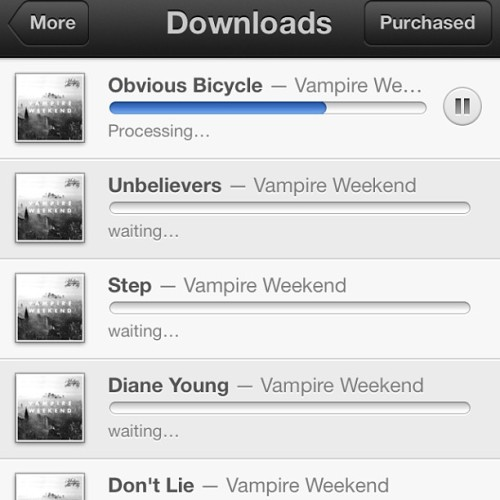 AHHH finally!!! #vampireweekend #modernvampiresofthecity