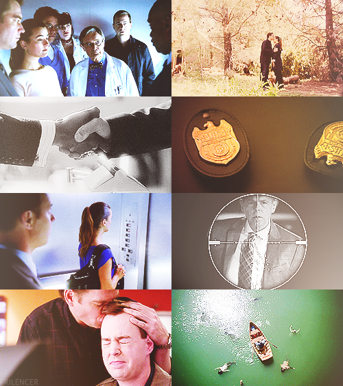 NCIS 10x24 ; Damned If You Do  We think we have to protect the people we love from the truth, but the truth isn't the poison. It's the cure.