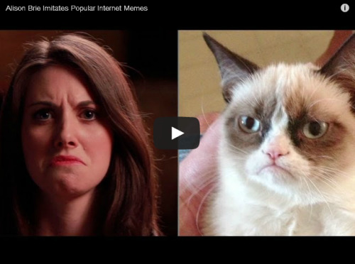 This Video Of Alison Brie Recreating Popular Internet Memes Is Simply Delightful