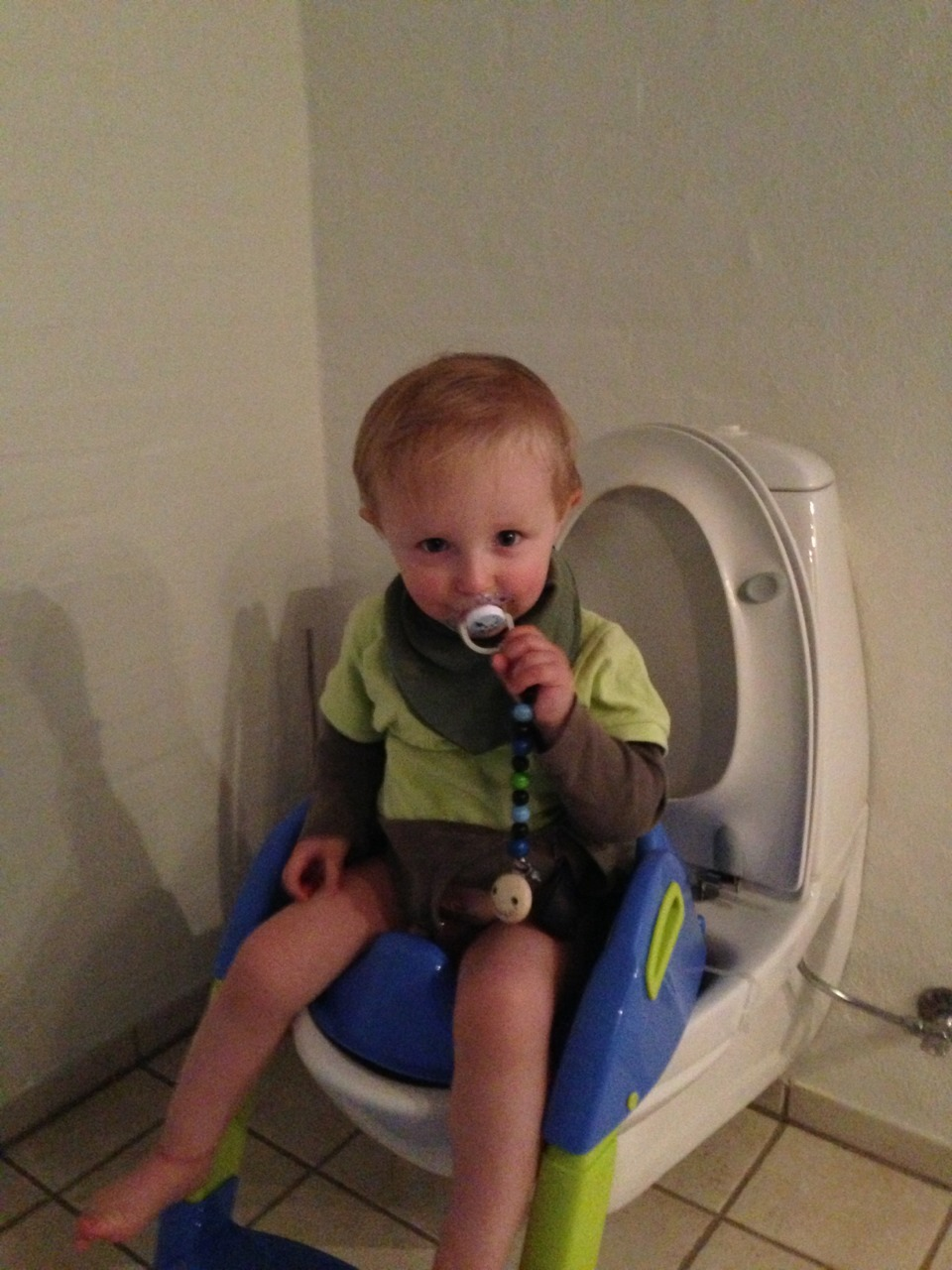 Sebastian, aged 18 months, has already peed twice on the toilet - at his own request I might add. Was forced to dig out the kiddie toilet seat from the room behind the garage. Had not counted on needing it any time soon. His mother and I are in awe.