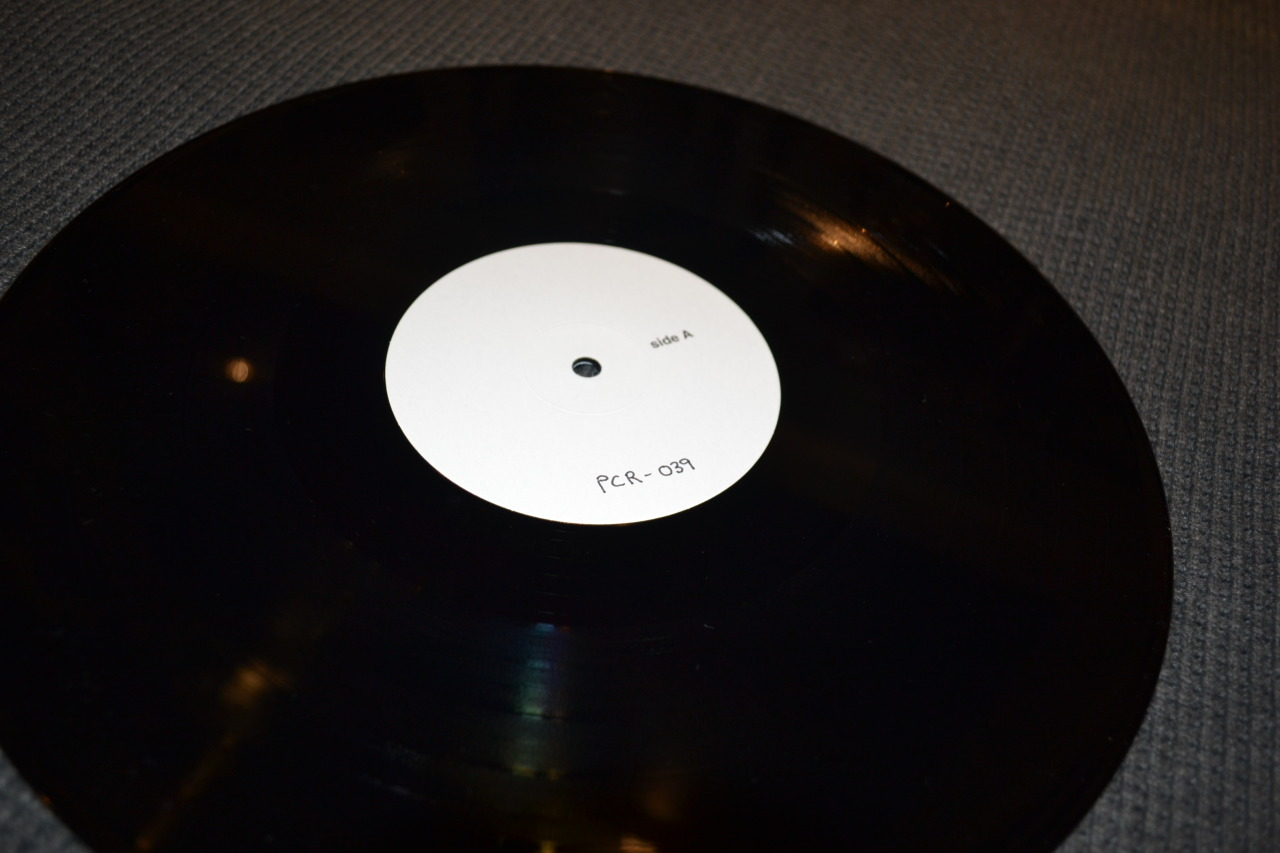 Jen Buxton - Don't Change Your Plans TEST PRESS. I'm assuming this is out of 5, but unlike other Poison City Records test presses it doesn't say so on the label. If you haven't heard of Jen, she is an amazingly talented woman with her guitar, vocals and lyrics. Her debut LP, Don't Change Your Plans, gets played at least once a day by me. It is seriously one of the best records I have ever heard, and I'm not just saying that because she's a mate. The 1st press is now out of stock (I'm really keen for one so hit me up if you are wanting to sell a copy!), but there are talks of a 2nd press sometime this year. Hopefully a follow up LP will be out soon too. Jen is playing on every date of the Hits and Pits Festival (Australia), and if you're going you should definitely get out early to see her live. I daresay it sounds even better than her recording. She is also doing a lot of random gigs in Newcastle (her hometown) whilst also playing Stay Gold club in a couple of weeks, which I hope to see you all at! tl;dr? Jen Buxton knows how to play guitar and sing highly personal and relatable lyrics. She and mate Wil Wagner know what's up. If you like punk, acoustic, folk, country, or anything really, you should check her out for sure. And please don't let any of those genres be a deterrent. I don't really know what to say - just fucking listen to the record here. I'll do a proper LP review when I'm not so bogged down with uni work :)