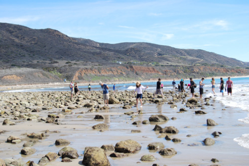Photo Credit Lisa Paredes. Leo Carrillo Beach northwest of Los Angeles - tide pools, rocks, and close to Neptune's Net, the best beer and seafood bike bar in L.A.