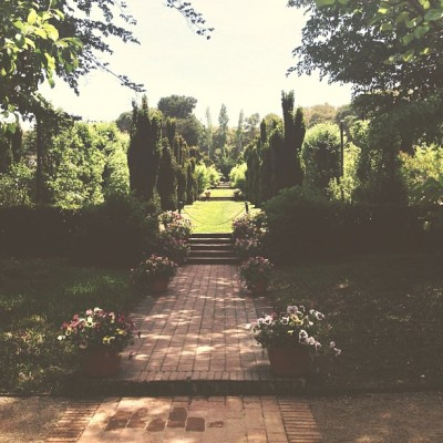 Down the garden path (at Filoli)