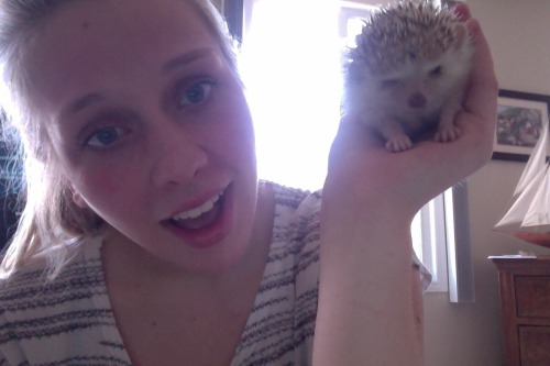 seriously, hedgehogs are so cute