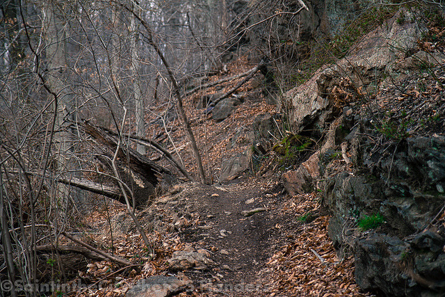 Path on Flickr.Via Flickr: Pennypack Park, PA. Check out my shop:www.etsy.com/shop/CitySaint Like me on facebook.www.facebook.com/citysaintphoto