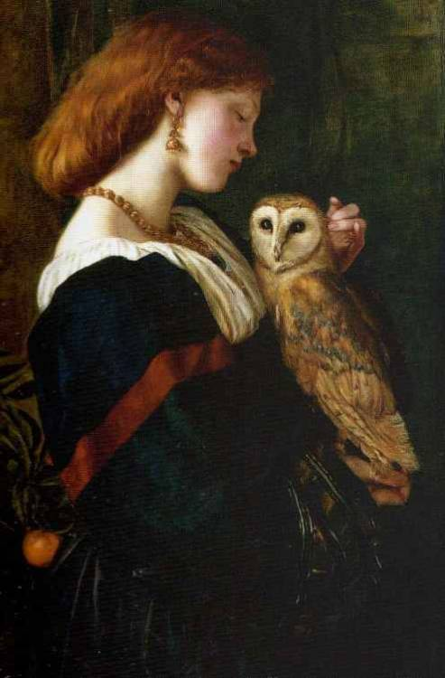 The Owl Valentine Cameron Prinsep 1863 19th Century Art Painting Portrait British Painter British Artist Pre-Raphaelite Brotherhood Pre-Raphaelism Pre-Raphaelite 1860s Victorian Victorian Era