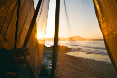 tearevor:  Missing Baja mornings
