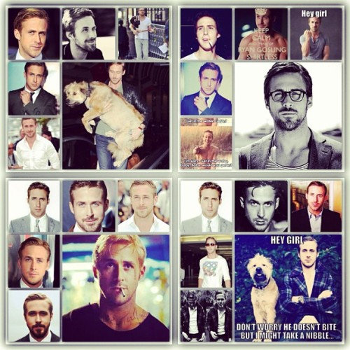 kellyannkornell:  All my Ryan gosling pictures (or most of them) in one. #obsessed #ryan #gosling @iryangosling