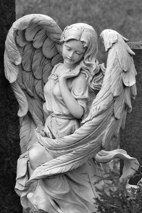 la-petite-queen:  I saw the angel in the marble and carved until I set him free. ~ Michelangelo