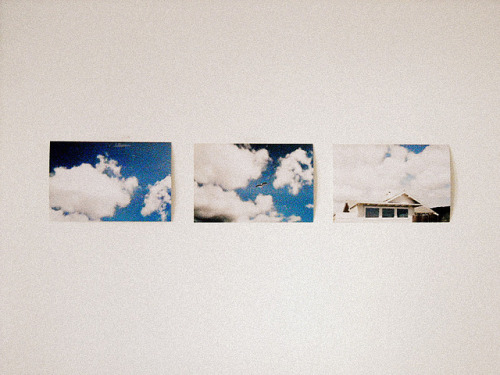 noceuse:  film by annamackenzie on Flickr.