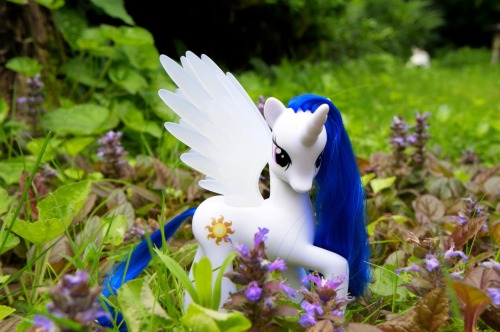 Blue haired Princess Celestia in my garden:)