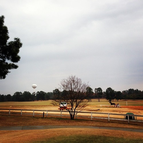 Pinehurst #1 is a really great golf course. I like it better than eight. Probably that's because it's easier, but also it feels more like Pinehurst. Plus: Chariots! (at Pinehurst No. 1 Golf Course)