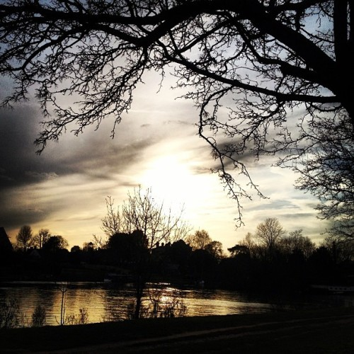 #thames #riverthames #kingston #london #uk #river #towpath #sunset #cold #spring
