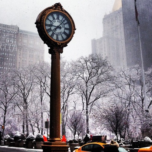 A snowy #nyc #fifthave