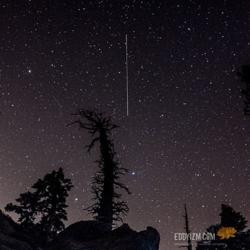 Falling Star at 9,200 ft #darknight #stars www.eddyizm.com #cosmos #galaxy #astrophotography #sanjacinto #nature #gooutside #treeporn #night #nightphotography #longexposure #fisheye #tramway #mountains
