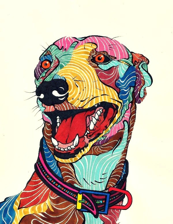 kaelkasabian:  Dog - Perro - Galgo - Colors.