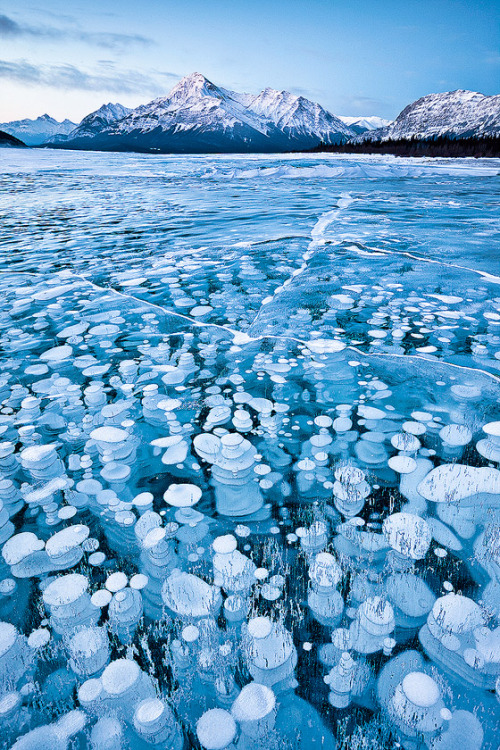 crystalfang:  its-salah:  Frozen Bubbles | by Emmanuel Coupe  Cool