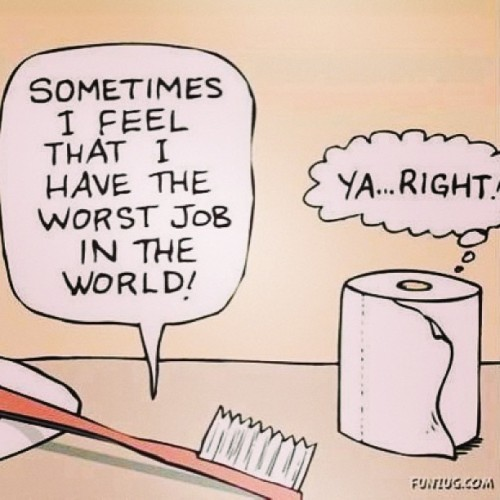 "Day 8: something that begins with ""t"" #toothbrush #toiletpaper  #joke #funny #worse #job #fmsphotoaday  #photochallenge"