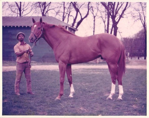 racinglegends:  Secretariat and his beloved groom, Eddie