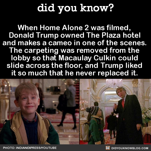 10 Home Alone 2 Facts That Will (Hopefully) Give You Tim Curry's ...