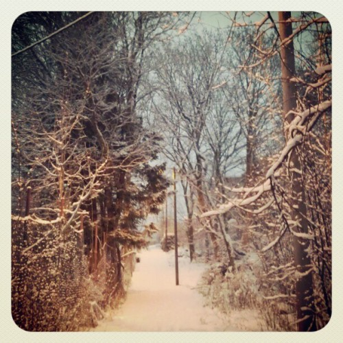 Winter Wonderland. #Bergen #Norway #Norwegian #Winter #Wonderland #Snow #9am #Morning #DarkTimes   (at Øvsttun)