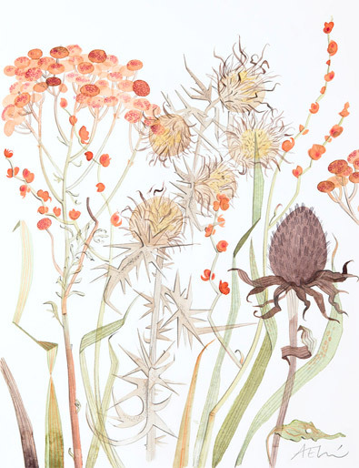 Angie Lewin Meadow with Thistle & Crocosmia