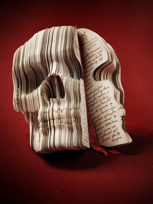 naamahdarling:  Adventurer's Diary Skull Raphael Dahan THAT is some awesome CGI.