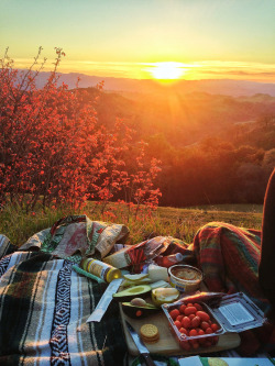 this pic is simply beautiful <3 Summer sunset picnic