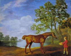thehandbookauthority:  Pumpkin with a Stable Lad, George Stubbs, 1774