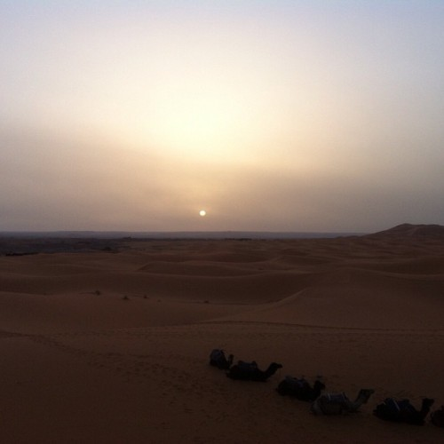 This morning, Sahara desert, Morocco, sunrise. Photo credit: my dad