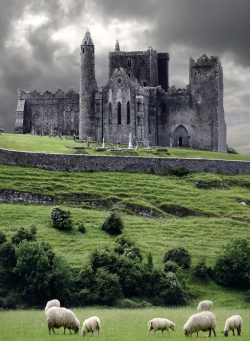 bluepueblo:  Medieval Castle, Cashel, Ireland photo via annette
