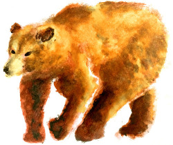 winter coming bear. watercolors/multimedia. brendan garbee