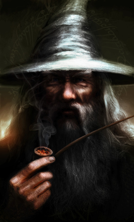 geeksngamers:  Gandalf the Grey - by Fabio Leone
