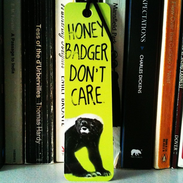#honeybadgerdontcare #books