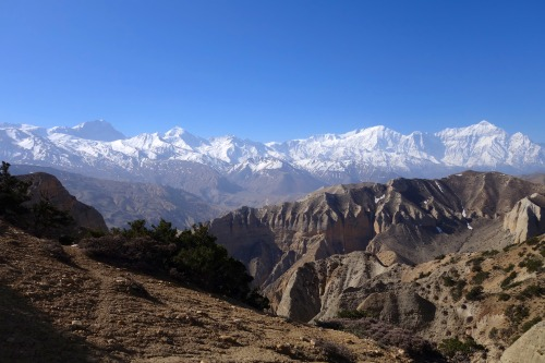 """Oh, hi, Himalaya!""  - A frequent thought while running in Nepal's Mustang region.Photo: Bryon Powell"