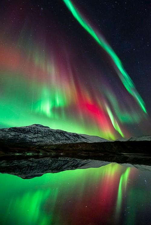 magicalnaturetour:  The Aurora Borealis, over Hogtuva Mountain in Norway  Source